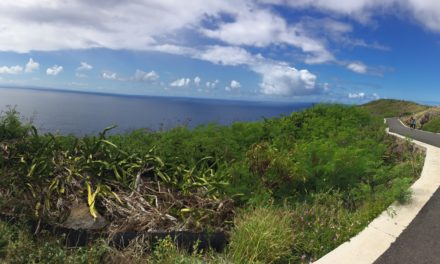 Best Hiking Spots on Oʻahu
