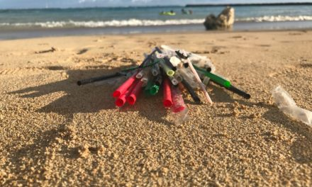 8 Ways to Reduce Plastic From Daily Life