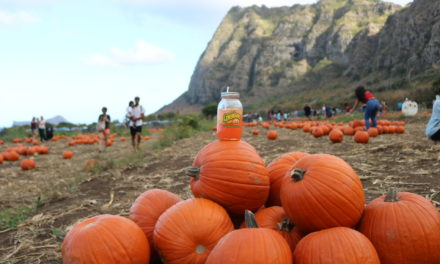 Waimānalo Country Farms Brings Fall to Hawaiʻi