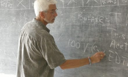 Microbiology Professor Forges Connections With W. African School