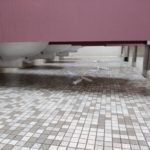 Opinion: Bathroom Cleanliness Lacks Due to Those on Campus