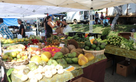 KCC Farmers' Market Supports Local Products