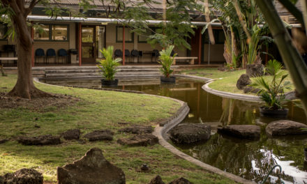 5 Overlooked Features of UH-Mānoa Campus