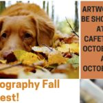 Board of Student Publications Hosts Photography Contest