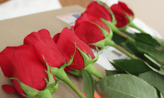 Valentine's Day Ideas for Long-Term Couples