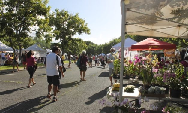 KCC Farmers Market Has Finally Reopened